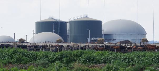 Transformer les déchets en énergie : une première centrale biogaz d'Afrique du Sud